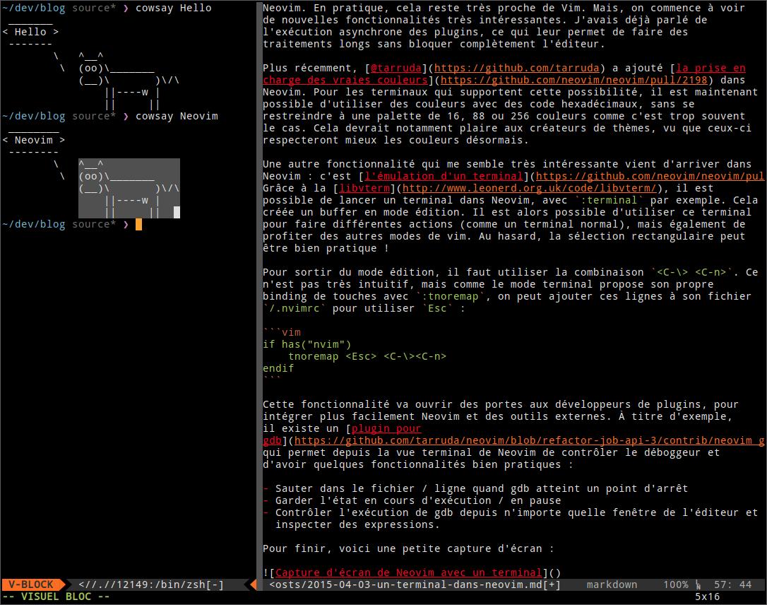Capture d'écran de Neovim avec un terminal